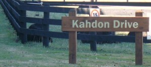 Kahdon Drive, named after the former NZ Trotter Of The Year.