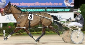 Saveapatrol, winning the Thames Cup at Alexandra Park on July 3. (Trish Dunell photo).