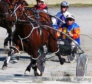 Ohoka Texas, in action for trainer-driver, Mark Jones.